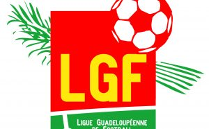 LOGO-LGF-VECTORISE-300x186